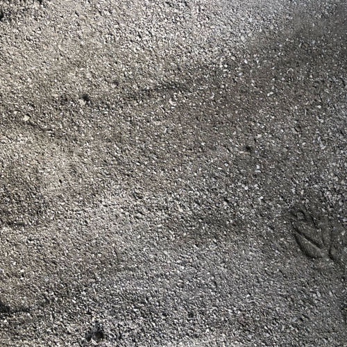 stone dust 3mm colsmith